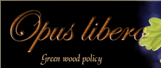 Opus libero Sustainable Timber Policy
